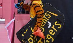Basketball  1. Bundesliga  2016/2017  Hauptrunde  12. Spieltag  04.12.2016 Walter Tigers Tuebingen - ratiopharm Ulm Tigers Maskottchen Walter enttaeuscht nach dem verlorenen Derby FOTO: Pressefoto ULMER/Markus Ulmer xxNOxMODELxRELEASExx